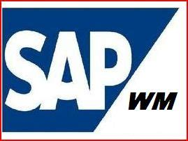 Sample cover letter sap fi consultant